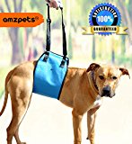 Dog Lift Harness By AMZpets - XL. Support Sling Helps Dogs With Weak Legs Stand Up, Walk, Climb Stairs & Get into Cars.. Best Alternative to Dog Wheelchair. RECOMMENDED BY VETERINARIANS - Extra Large