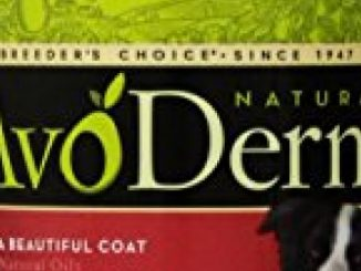 AvoDerm Natural Skin and Coat Formula Shampoo for Dogs and Cats