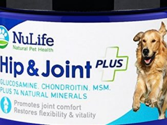 NuLife Natural Pet Health – Glucosamine Chondroitin for Dogs with MSM & Organic Coral Calcium – Hip and Joint Supplement for Arthritis Pain Relief & Improved Mobility – 6oz Powder
