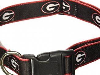 NCAA Georgia Bulldogs Dog Collar, Medium/Large  – New Design