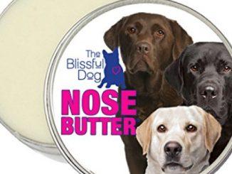The Blissful Dog Labrador Retriever Nose Butter, 2-Ounce