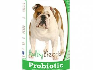 Healthy Breeds Dog Probiotic Soft Chews for Bulldog – OVER 200 BREEDS – Vet Formulated to Support Digestion – Grain Free – 100 Chews