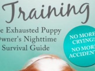 Puppy Sleep Training – The Exhausted Puppy Owner's Nighttime Survival Guide