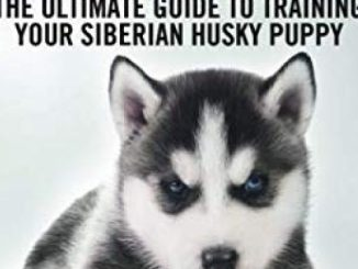 Siberian Husky Training – The Ultimate Guide to Training Your Siberian Husky Puppy: Includes Sit, Stay, Heel, Come, Crate, Leash, Socialization, Potty Training and How to Eliminate Bad Habits
