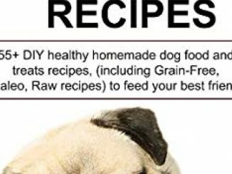 EASY HOMEMADE DOG FOOD RECIPES: 55+ DIY healthy homemade dog food and treats recipes, (including Grain-Free, Paleo, Raw recipes) to feed your best friend. Reviews