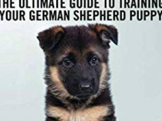German Shepherd Training – The Ultimate Guide to Training Your German Shepherd Puppy: Includes Sit, Stay, Heel, Come, Crate, Leash, Socialization, Potty Training and How to Eliminate Bad Habits
