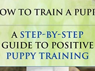 Puppy Training: How To Train a Puppy: A Step-by-Step Guide to Positive Puppy Training (Dog training,Puppy training, Puppy house training, Puppy training … your dog,Puppy training books Book 3)