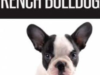 The Complete Guide to French Bulldogs: Everything you need to know to bring home your first French Bulldog Puppy Reviews
