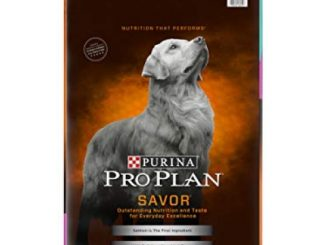 Purina Pro Plan With Probiotics Dry Dog Food; SAVOR Shredded Blend Salmon & Rice Formula – 33 lb. Bag