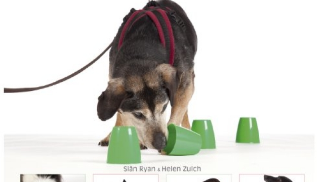 No walks? No worries!: Maintaining wellbeing in dogs on restricted exercise Reviews
