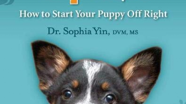 Perfect Puppy in 7 Days: How to Start Your Puppy Off Right Reviews