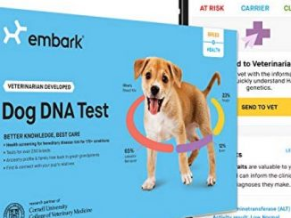 Embark | Dog DNA Test | Breed & Health Kit | Breed Identification & Canine Genetic Health Screening