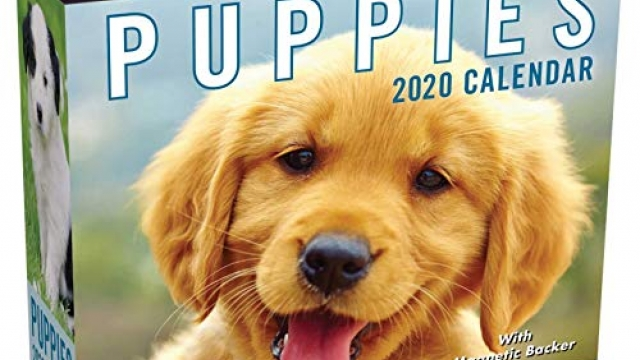 Puppies 2020 Mini Day-to-Day Calendar Reviews