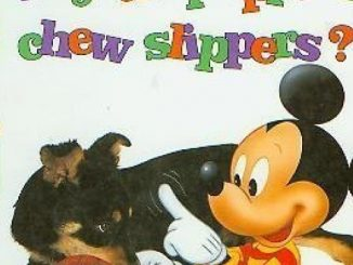 Why do puppies chew slippers? (Mickey wonders why)