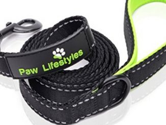 Extra Heavy Duty Dog Leash by Paw Lifestyles – 3mm Thick, Padded Handle, 6ft long – 1″ Wide, Perfect for Medium and Large Sized Dogs
