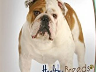 Healthy Breeds Multi Vitamin Plus Chewable tablet for Bulldog 180Count Reviews