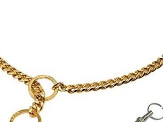 Didog Luxury Titan Choke Chain Collar,Best for Pit Bull, Doberman, Mastiff, Bulldog(22″ ,Golden)
