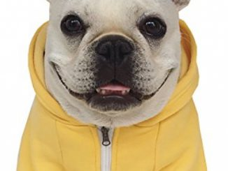 Moolecole Zip-up Hoodie Pet Costume Dog Clothes Outfit Funny Pet Apperal For French Bulldog And Pug Yellow 2XL