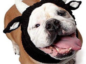 Zoo Snoods – The Original Knit Bull Dog Snood (size: large) Reviews