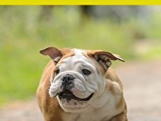 Bulldog: Children's Picture Book about Bulldog for Kids (Dogs for Kids Series) Reviews