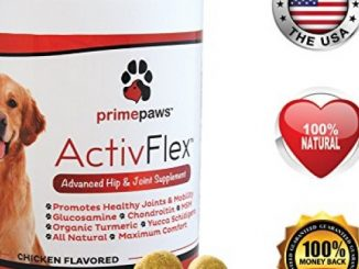 ActivFlex, Best Glucosamine for Dogs, Safe Arthritis Pain Relief, All Natural Hip & Joint Supplement for Dogs, Improves Hip Dysplasia, Chondroitin, Turmeric, MSM for Dogs, 120 Soft Chews, Made in USA Reviews