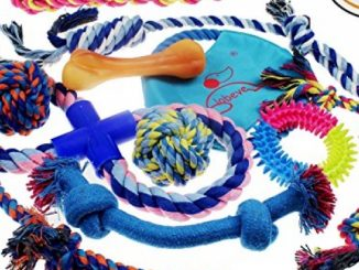 Lobeve Dog Toys 10 Pack Gift Set, Variety Pet Dogs Toy Set for Medium to Small Doggie Reviews