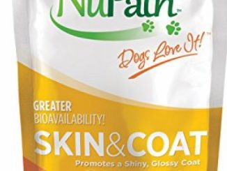 NuPath Skin & Coat Pumpkin Supplement Squeeze Pouches For Dogs: Rich In Fiber And Vitamin A – In Easy-To-Squeeze Pouch (Skin & Coat, 1-Pack)