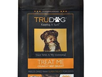 Real Meat Organic Dog Treats – Treat Me: Crunchy Beef Delight Freeze-Dried Raw Super Treats (2.5oz) – 100% All Natural Treats Support Healthier Teeth and Gums, Skin and Coat, and A Boosted Immune System
