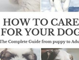 How to Care for Your Dog: The Complete Guide from Puppy to Adult: A guide to caring for your dog including food, nutrition, behaviour, habits, training and vaccinations Reviews