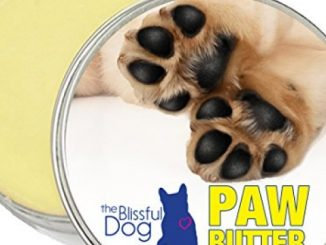 The Blissful Dog Paw Butter for Dog Rough and Dry Paws, 1-Ounce