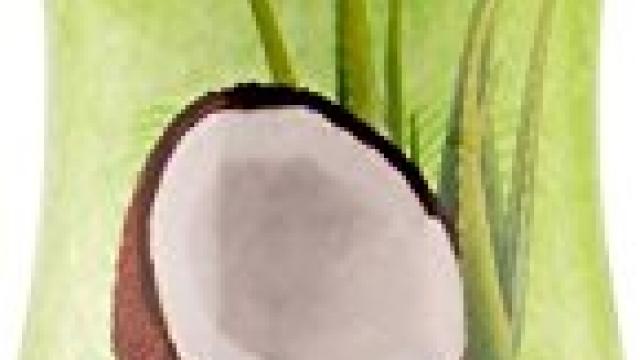 TropiClean Aloe and Coconut Pet Shampoo, 20oz