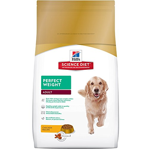 Best Food To Make A Dog Gain Weight
