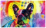 Drymate Pet Placemat, Dean Russo Designs, Dog Food Mat, Cat Food Mat, Zorb-Tech Anti Flow Technology for Surface Protection (USA Made) (12