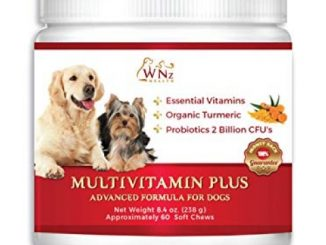 WetNozeHealth Vitamins for Dogs – Canine Multivitamin Supplement with Organic Turmeric and Probiotics for Large and Small Dogs, Chicken Flavor – 60 Soft Chews Reviews