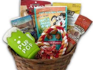 Dog Gift Basket set Puppy Pets Treats Crew Toys Reviews