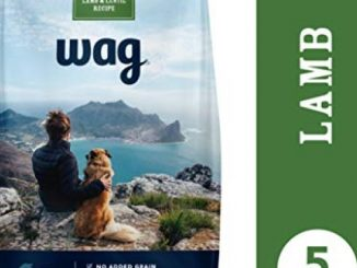 Amazon Brand – Wag Dry Dog Food Lamb & Lentil Recipe (5 lb. Bag) Trial