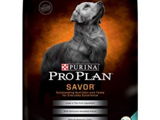 Purina Pro Plan With Probiotics Dry Dog Food, SAVOR Shredded Blend Lamb & Rice Formula – 35 lb. Bag