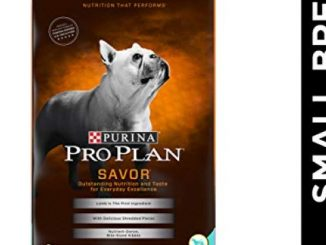 Purina Pro Plan With Probiotics Small Breed Dry Dog Food, SAVOR Shredded Blend Lamb & Rice Formula – 6 lb. Bag Reviews