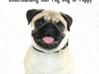 Pugs – The Owner's Guide from Puppy to Old Age  Choosing, Caring for, Grooming, Health, Training and Understanding Your Pug Dog or Puppy
