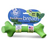 Pet Qwerks BarkBone Mint Flavor Dental Breath Stick Dog Chew Toy - Durable Dog Bones for Aggressive Chewers, Tough Power Chew Toys | Made in USA with FDA Compliant Nylon - for Small Dogs & Puppies