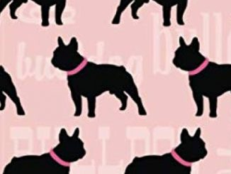 2020 – 2021 18 Month Daily Planner: Pretty Pink French Bulldog Cover | Daily Organizer Calendar Agenda | 6×9 | Work, Travel, School Home | Monthly … (Dog Lover Lifestyle Organizer Series)