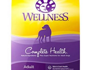 Wellness Complete Health Natural Dry Dog Food with Grain, Chicken & Oatmeal, 30-Pound Bag Reviews