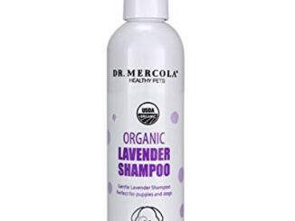 Dr. Mercola Organic Lavender Shampoo for Dogs, 8 fl oz. (237 ml), USDA Organic