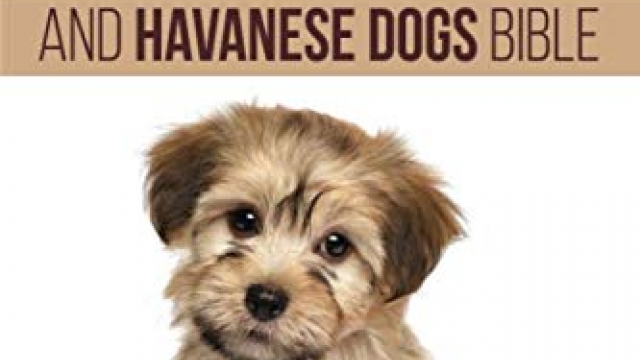 Havanese And Havanese Dogs Bible: Includes Havanese Puppies, Havanese Dogs, Havanese Breed, Havanese Rescue, Finding Breeders, Havanese Care, Mixes, Bichon Havanese, Havapoo and More!